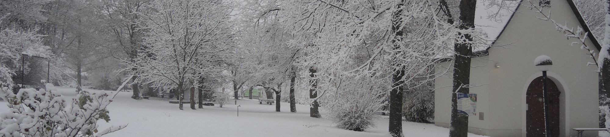 Mahoe_Winter_2020